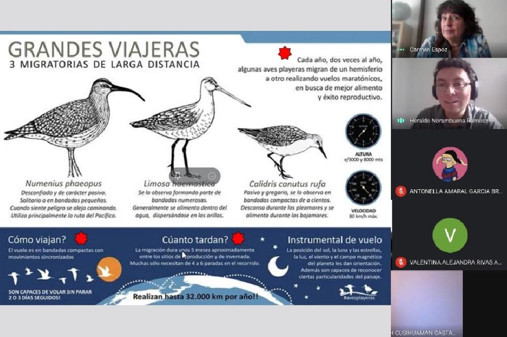 Puerto de Ideas y Centro Bahía Lomas enseñan a estudiantes el cautivador mundo de las aves
