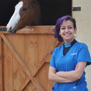 Alumna de Medicina Veterinaria de UST Viña del Mar investiga el uso de kinesiotaping en la recuperación de lesiones en caballos de carrera