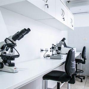 Centro de Investigación Bahía Lomas abre Laboratorio LECAS en la Región del Biobío