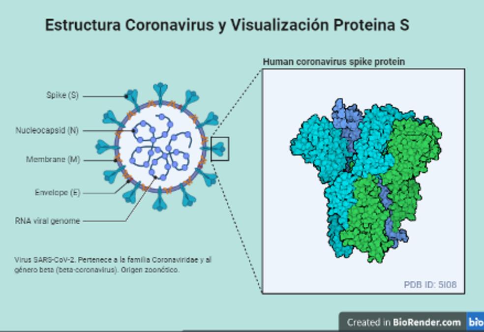 Boletín científico covid-19 sede Iquique Vol. 2 N°1