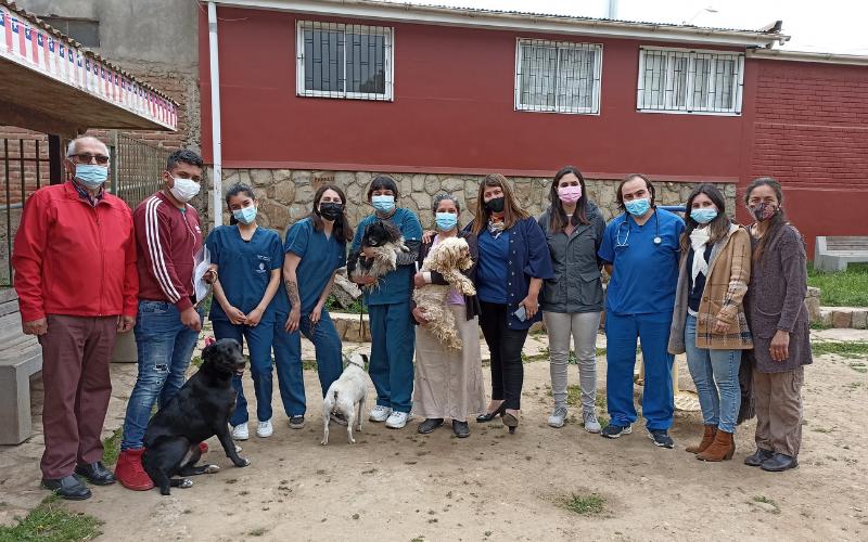 Alumnas de Técnico en Veterinaria y Producción Pecuaria participan en operativo sanitario para mascotas en Papudo