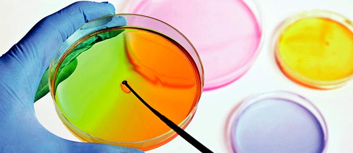 Diplomado en Biología Molecular para la Aplicación en el Laboratorio Clínico