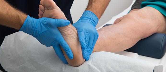Diplomado en Terapia Manual y Rehabilitación de las Disfunciones Musculoesqueléticas