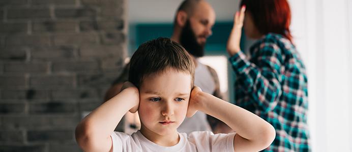 Diplomado en Violencia en la Familia