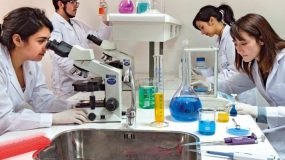 Bachillerato en Ciencias