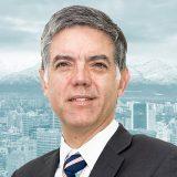 Gonzalo Vargas Otte