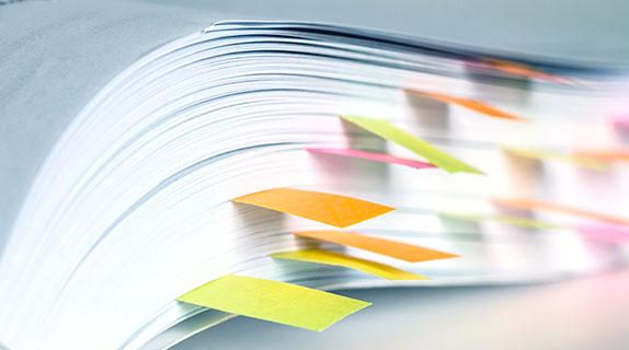 Conoce el Manual para la Postulación de Proyectos a Fuentes Externas de Financiamiento