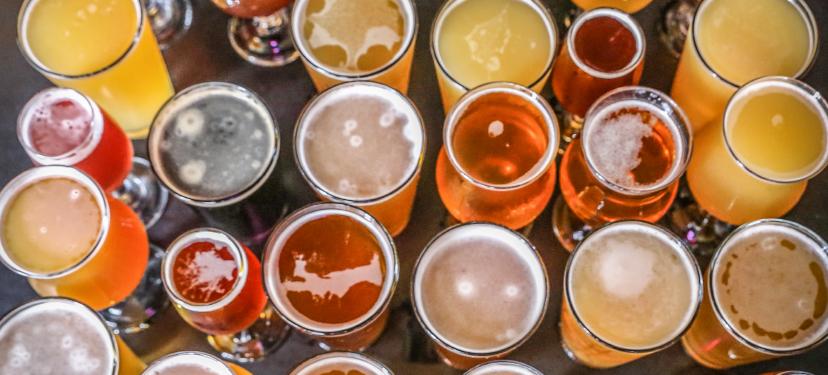 Valorización de Residuos, Identificando Alternativas de Uso para Nuevas Líneas de Negocio en la Industria Cervecera