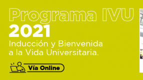 Programa IVU